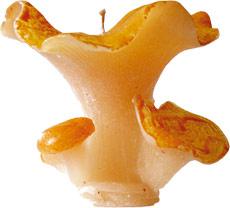 Carambole-sefam-bougie