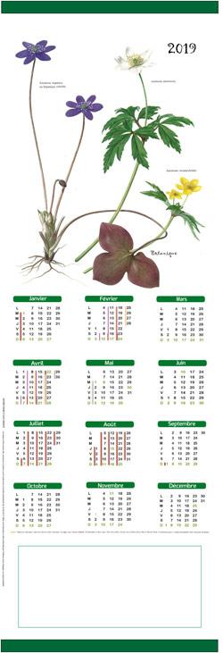 Calendrier-kakemono-botanique
