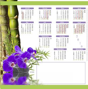 Calendrier-kakemono-carre-orchidée