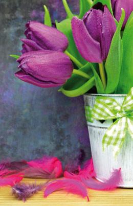 Calendrier-laminé-tulipes