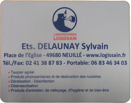Tapis-de-souris-delaunay