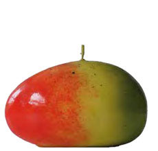 bougie-mangue-sefam
