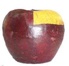 bougie-pomme-sefam