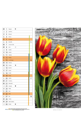 Floral-avril