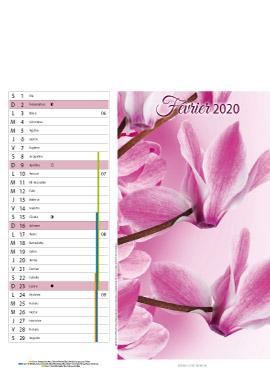 Floral-fevrier