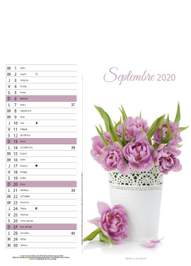 Floral-septembre
