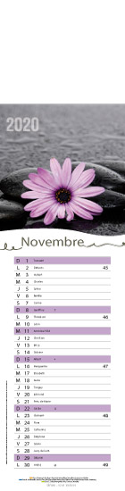 Novembre-zen