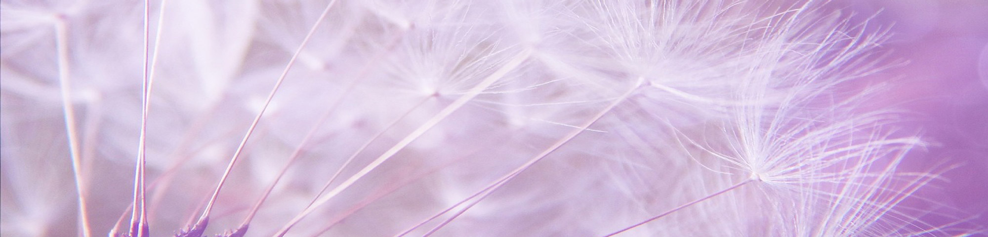 Slider-violet-sefam