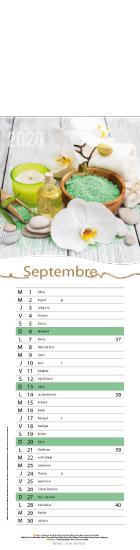 Septembre-zen