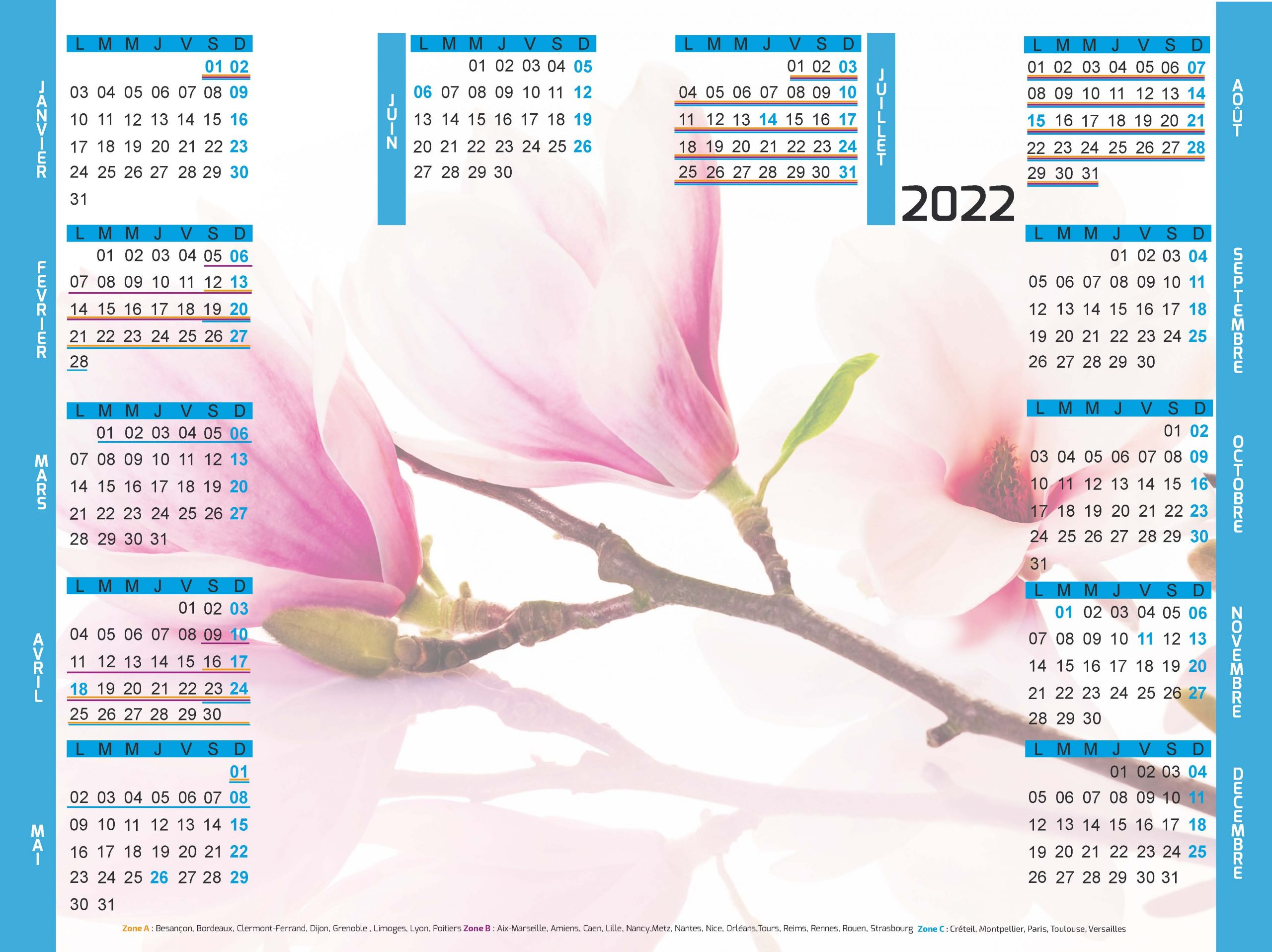 Memo-magnolia-sefam
